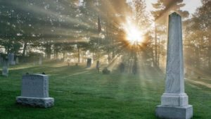 Sunbeams in Cemetary